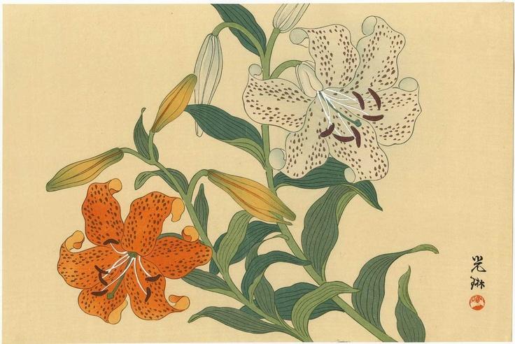 Tiger lily printable coupons