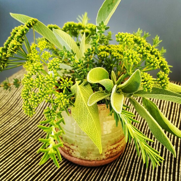"""Weekly posy - """"greensleeves""""- parsley, sage, rosemary and thyme"""