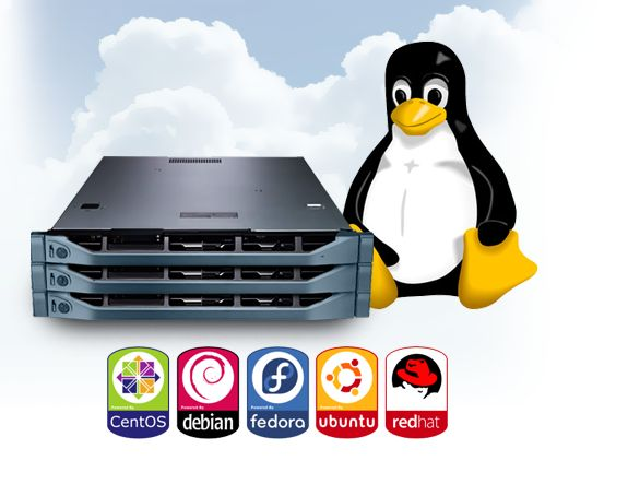 #dedicated #web #server # hosting