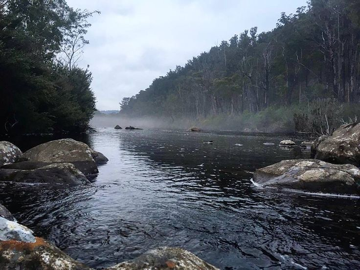 Beautiful image from Ben Smith of the Derwent River , at Wayatinah , very calming and peaceful #discovertasmania #thisistassie #flyfishing #tasweekend