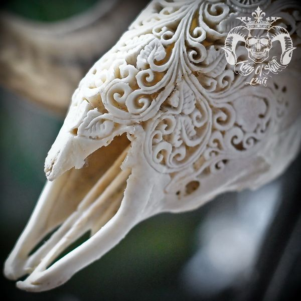 Hand Carved Ram Skull with Natural Finish and Flower FiligreeFind this Skull on Etsy