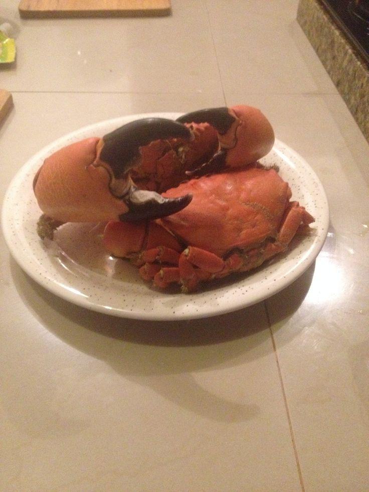 Pangora/crab  Cocinado al natural