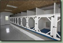 Lancaster dog kennel inside