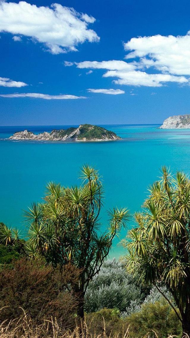 Beach, Anaura Bay, Gisborne, North Island, New Zealand