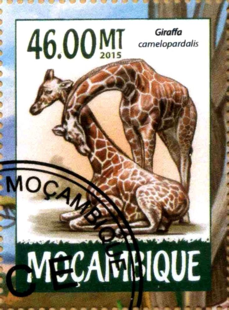 Stamp: Giraffa camelopardalis (Mozambique) Col:MZ 2015-03/3