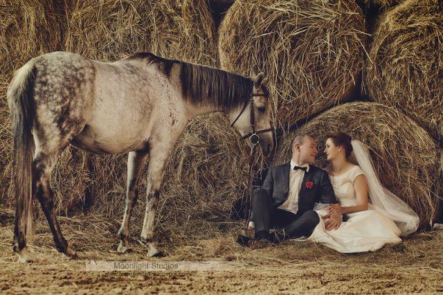 Sesja ślubna Chełm