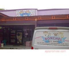 Bonchel Petshop #ayopromosi