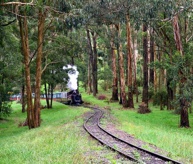 This century-old steam train is still running on its original mountain track from Belgrave to Gembrook in the scenic Dandenong Ranges.
