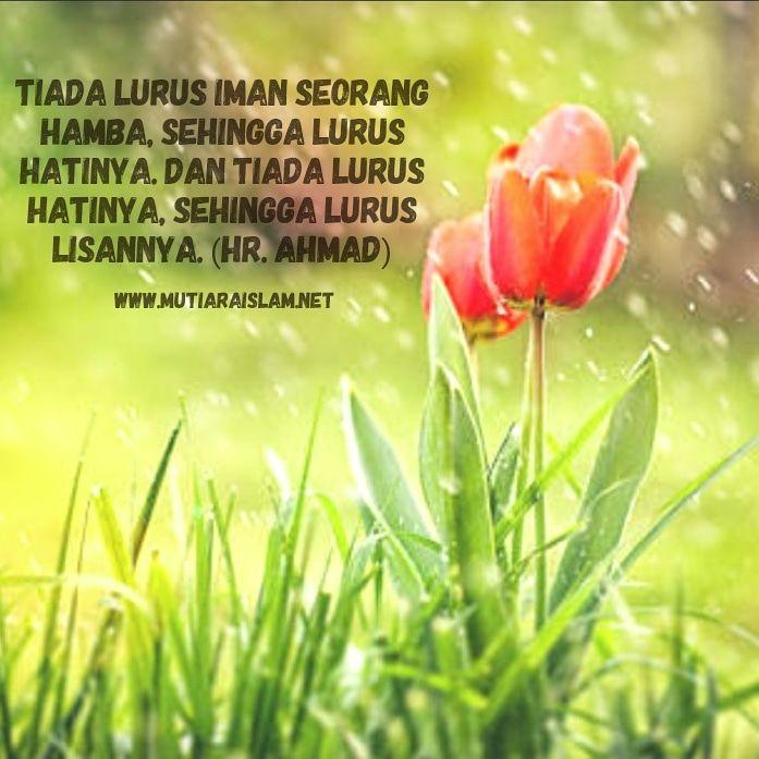 Gambar Kata Mutiara Islami Yg Indah | Kata-kata indah, Iman