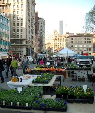 17 Best images about Edible Garden Design on Pinterest