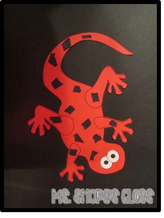 42 Best Bethlehem Ideas Images On Pinterest: 42 Best Images About Salamander Room On Pinterest