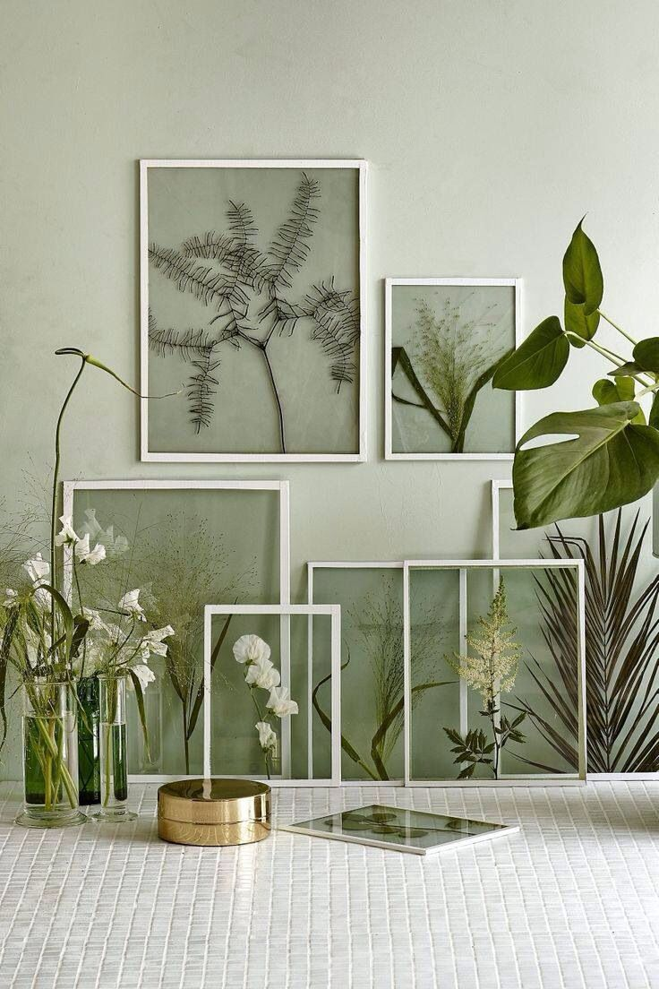 This is a cool way to have plants and not have to wipe/clean them. Could also be interesting for displaying jewelry in a similar way