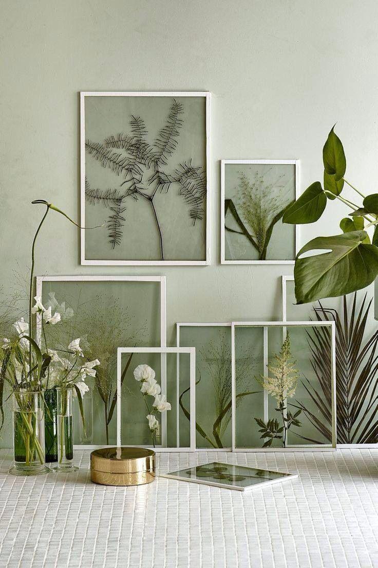 Gedroogde planten inlijsten