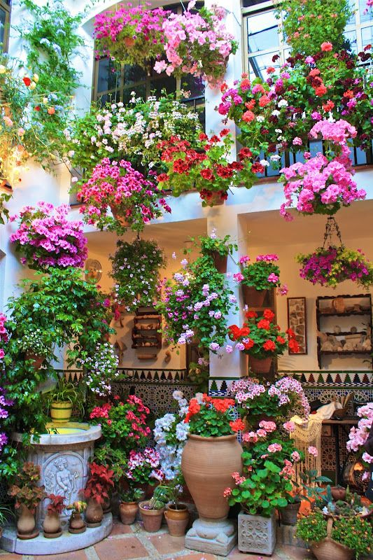 Andalusia, the culturally rich and historic area in southern Spain has so much more to offer. Colorful, vibrant, alive. These are the three words that immediately pop into my head when I am thinking about Andalucía.