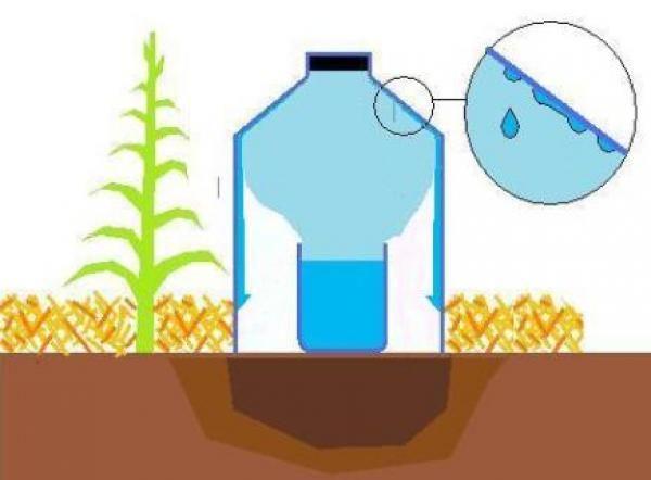 irrigateur solaire par condensation  1,5 litre d'eau par semaine