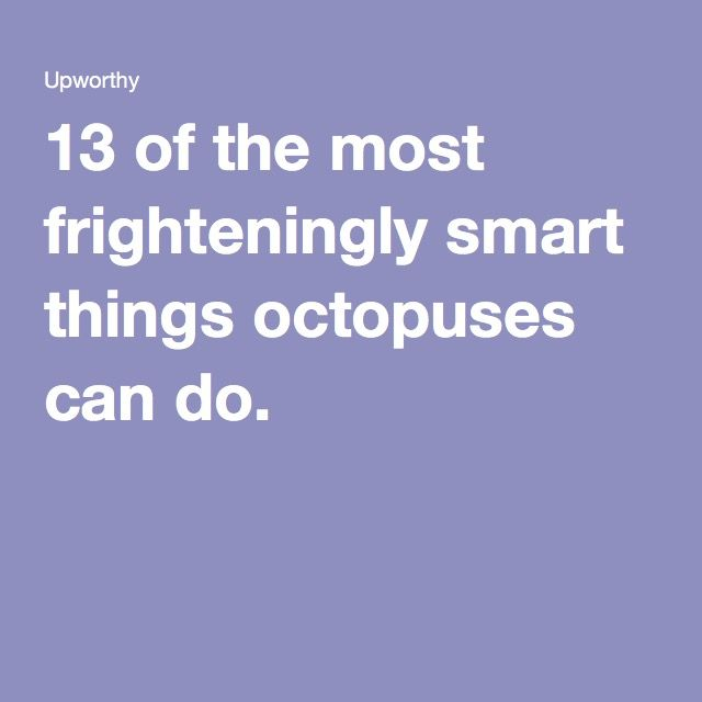 13 of the most frighteningly smart things octopuses can do.