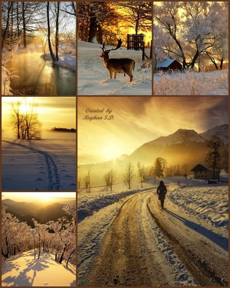 '' Winter Sunset '' by Reyhan Seran Dursun