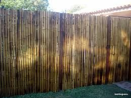 Resultado de imagem para cerca con cañas de bambu
