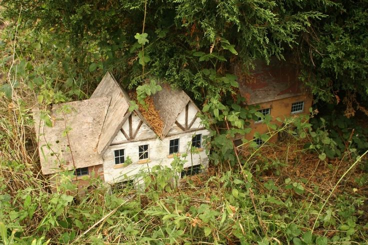 Model village enthusiast Tim Dunn rescued an abandoned village that was buried under 15 years' worth of undergrowth.