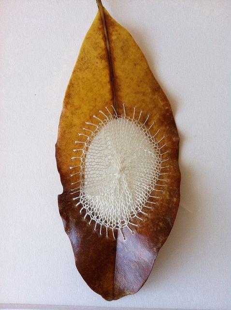 knit magnolia leaf