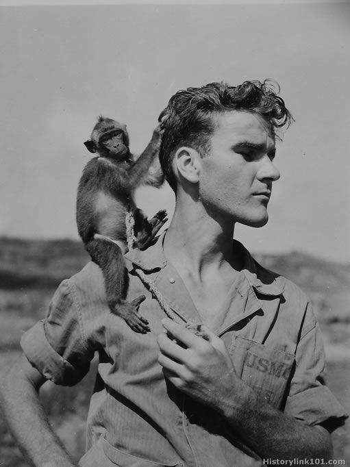 Banzai, a small monkey is the mascot of the unit. Official greeter of all patients, Banzai doubles in brass and also acts as night watchman. Okinawa - July 1945