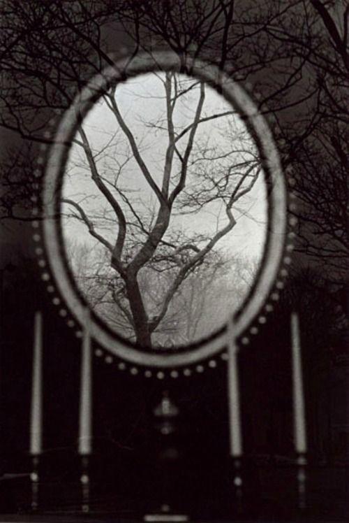 gueule-de-loupviolette:  Eva Rubinstein-Tree in Mirror,New York,1967.