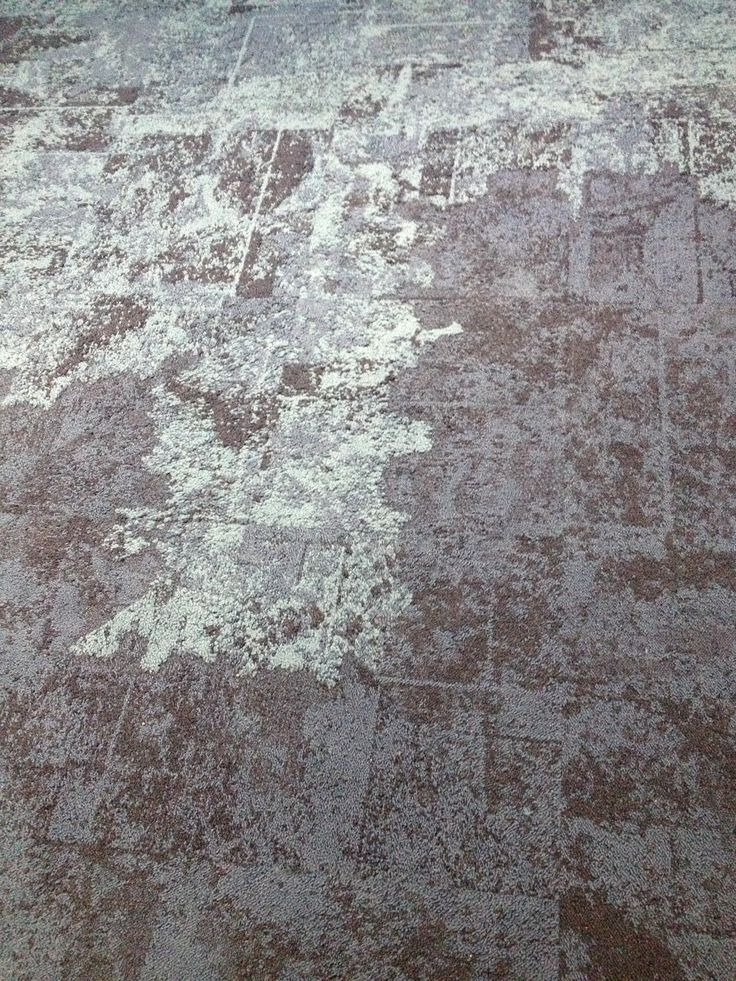 Beautiful New Carpet Tile From Interface Flooring