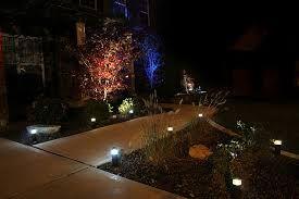 Gotta have lighting in the front garden!