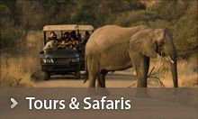 African Safaris | Tours in Africa - African Travel Gateway