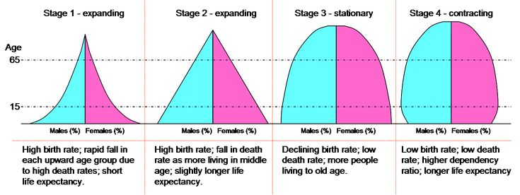Dtm pyramids - Demographic transition - Wikipedia