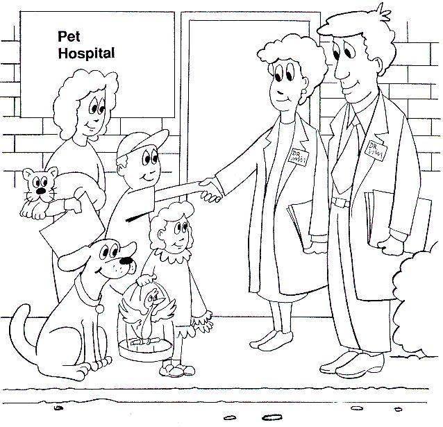 Pet Rocks Preschool
