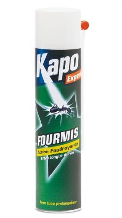 Aérosol spécial fourmis 400ml Kapo