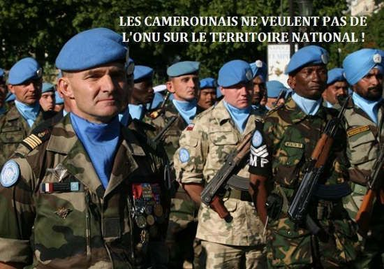 #Rediff Cameroun - Lutte contre Boko Haram : des membres du conseil de sécurité de l'ONU en visite au Cameroun…: Cameroun - Lutte contre…