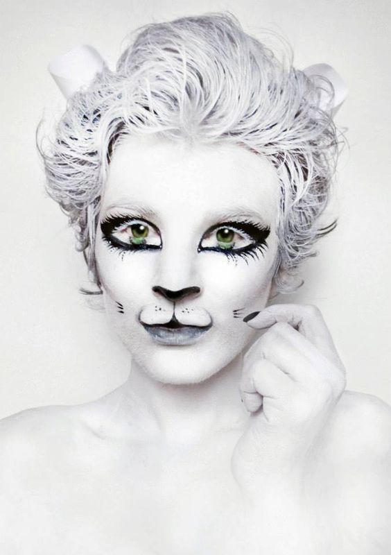 Top 17 Easy Animal Face Painting Designs – Unique Halloween Holiday Party Project - Homemade Ideas (9)