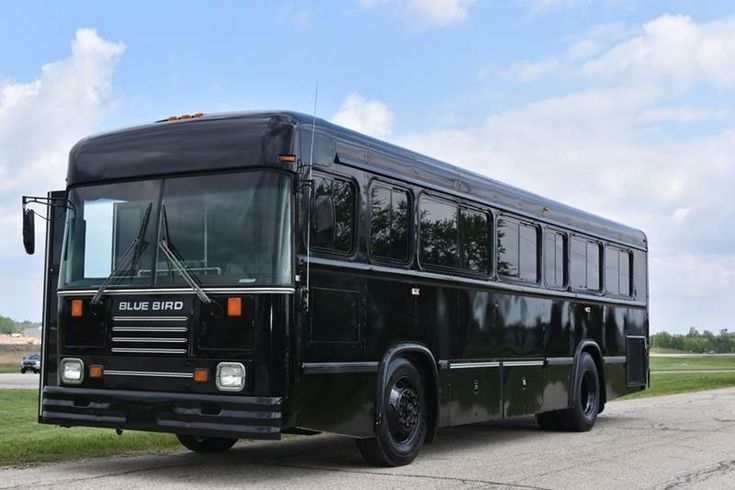Used 1996 Blue Bird 35 Passenger Party Bus For Sale
