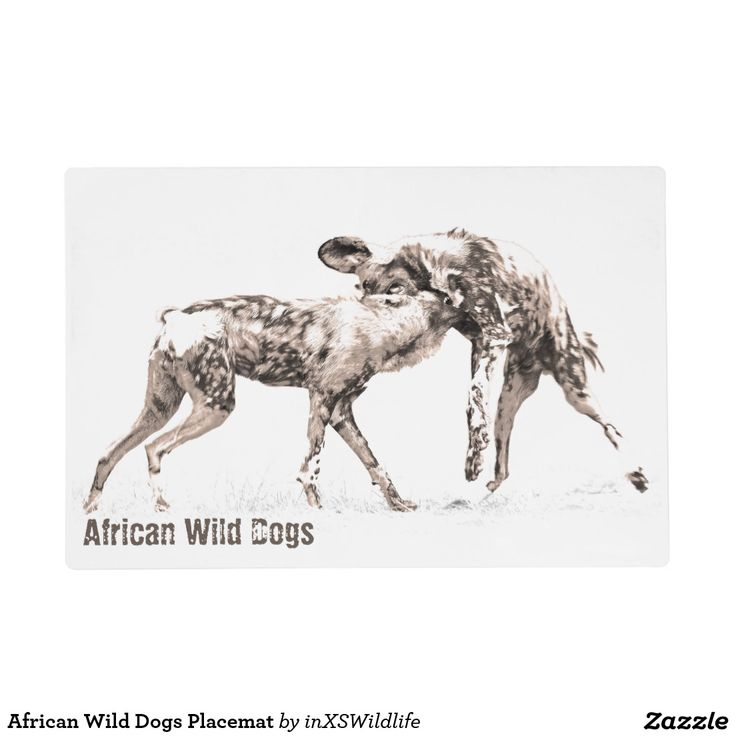 African Wild Dogs Placemat