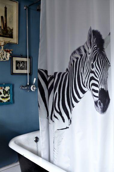cortina_zebra