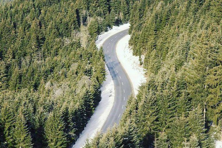 #road #pas #woods #winter #winterwonderland #outdoor #outdoors #s #trees #wood #mountainlife #wanderlust #hike #hiker #góry #wędrówka #las #drzewa #zielono #wiosna #green