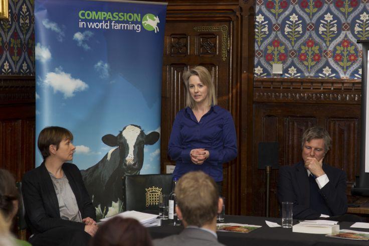 Caroline Lucas MP, Isabel Oakeshott and Zac Goldsmith MP (C) drewphotography