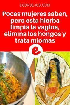 Salud femenina | Pocas mujeres saben, pero esta hierba limpia la vagina, elimina los hongos y trata miomas | Muy importante para todas las mujeres. Aprenda aquí ↓ ↓ ↓
