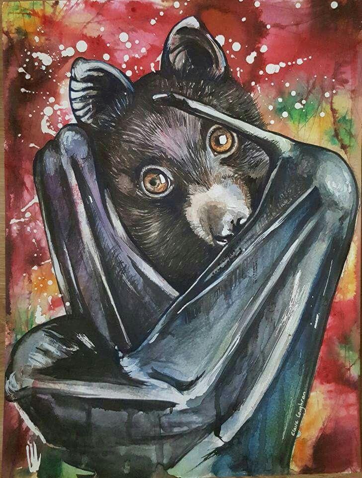 Flying Fox, Watercolour by Claire Loughran Irish artist. bat