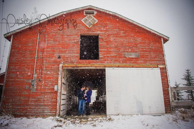 Winter Wonderland Family Session - Calgary Family Photographer   Paisley Photography - snowy winter family photography - Family Photography - barn family photos