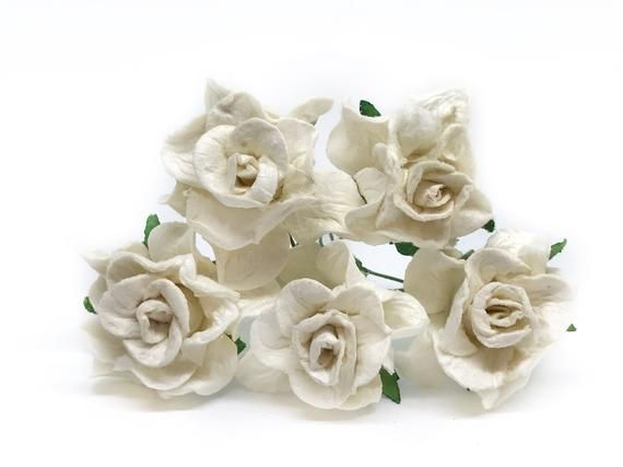 White Paper Rose White Paper Flowers Miniature Flowers Mulberry