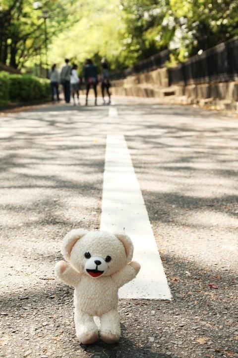 ファーファお散歩