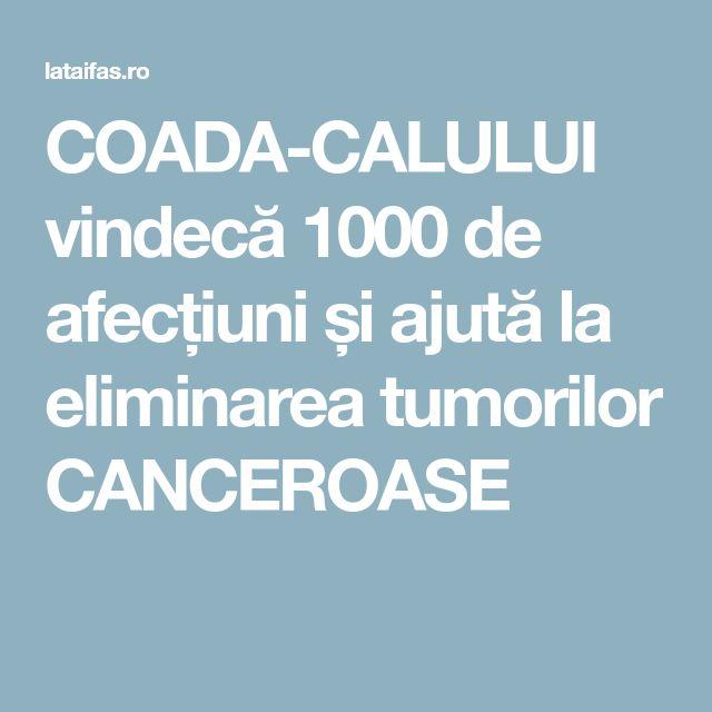 COADA-CALULUI vindecă 1000 de afecțiuni și ajută la eliminarea tumorilor CANCEROASE