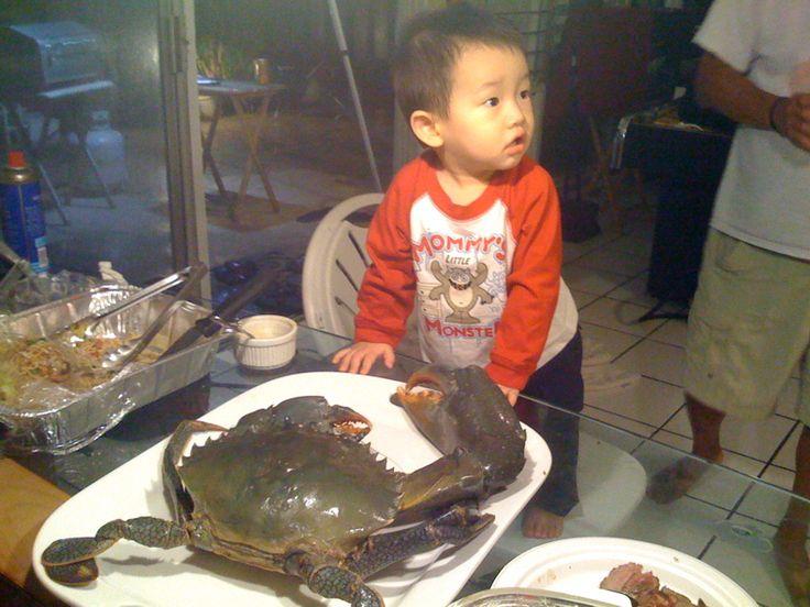 Samoan Crab | HAWAII | Hawaii, Pancakes, Seafood