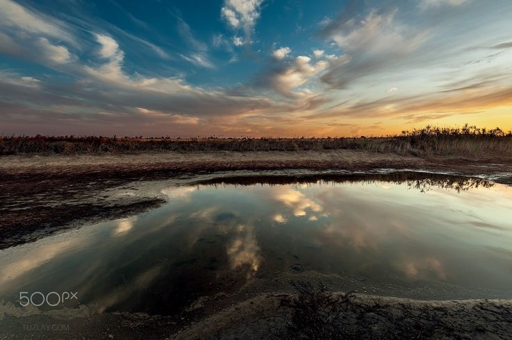 The remains of the pond - In 2015, it was a hot summer and some reservoirs have dried up. The picture was taken near the village of Golubitskaya, Temryuk district, Krasnodar Krai, Russia.