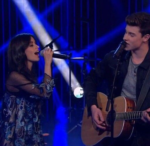 shawn mendes and camila cabello relationship counseling