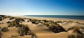 Dunas de El Portil (Huelva)