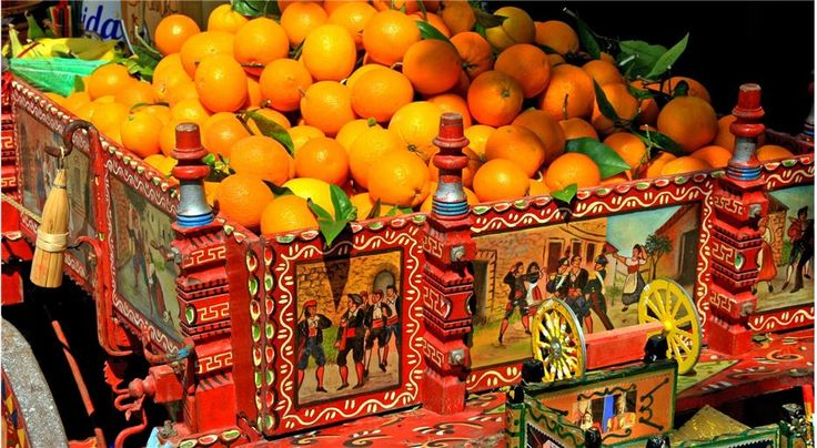 Sicilian Oranges in the Conca d'Oro